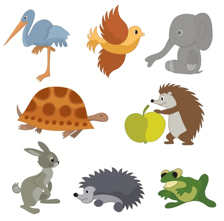 amphibians: set of vector small animals