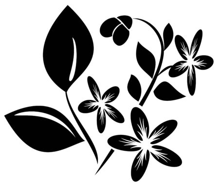 flora vector: vector black  element  for design with flora Illustration