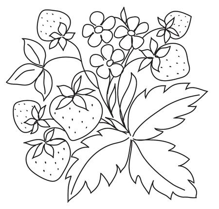 vector black sketch of strawberry Иллюстрация