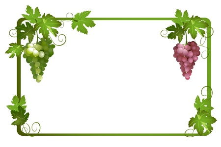 vector frame with ripe grapes