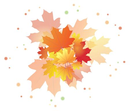bright autumn leaves - eps 10 Vector