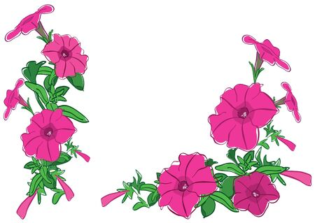 petunia: bouquets of red flowers - vector illustration