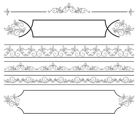 separator: set - floral elements for design. Illustration