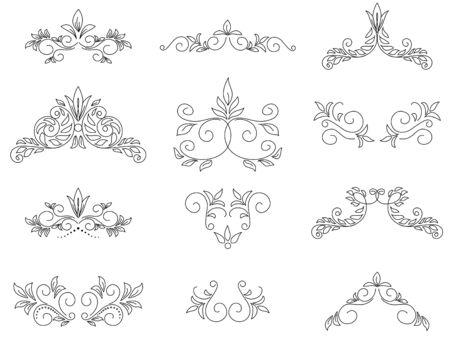 separator: floral design elements