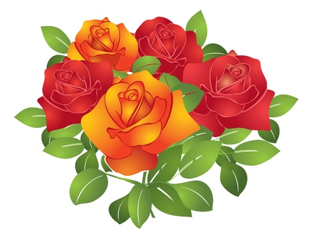 five petals: vector red and orange beautiful flowers - roses Illustration