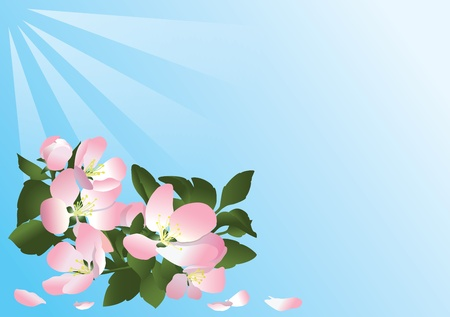 blue vector card with flowers of apple tree Vector