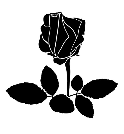 black rose - silhouette Stock Vector - 14086674