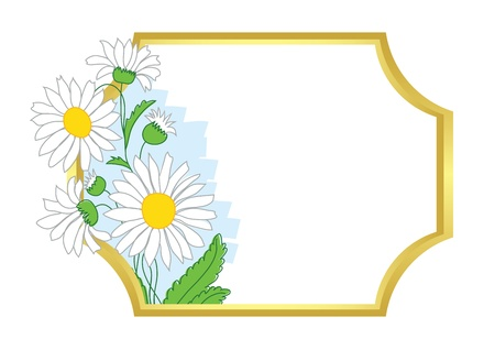 golden daisy: gold frame with white chamomile