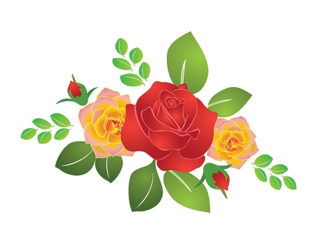 burgeon: bouquet of summer roses - vector