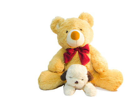 White puppy doll playing with teddy bear Stock Photo