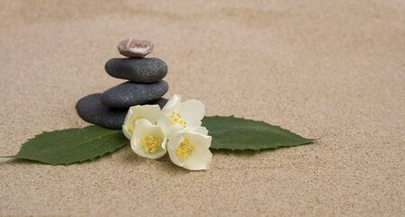 Jasmine and stones on a sand Stock Photo