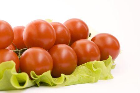 Fresh tomato branch isolated on white