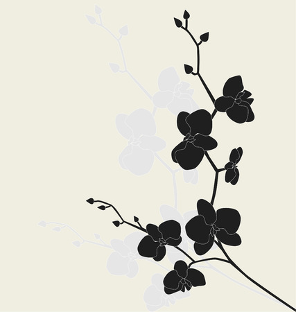 orchids: Stylized orchid branch, vector illustration