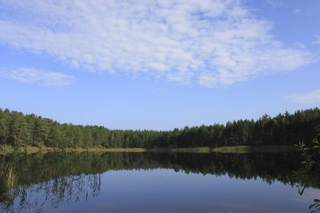 Nature scene - forest reflection in the water Stock Photo - 5330617