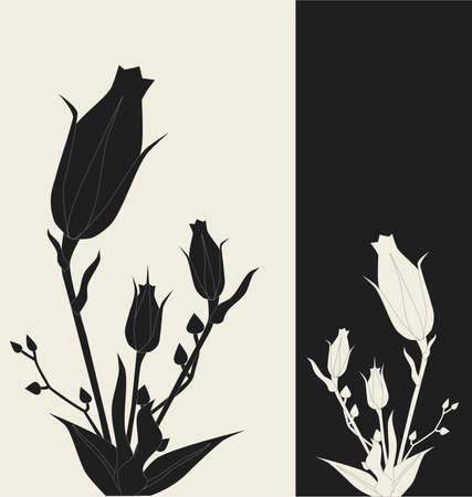 Floral design with shadow, detailed vector illustration Vector
