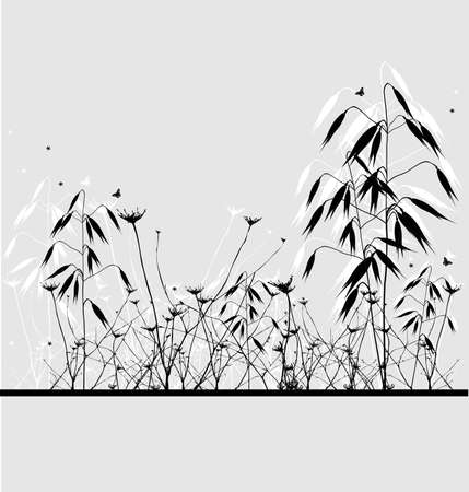 oats: Oats - nature background with the shadow, illustration