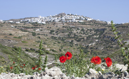 Poppies in front to typical Cyclades town  Stock Photo