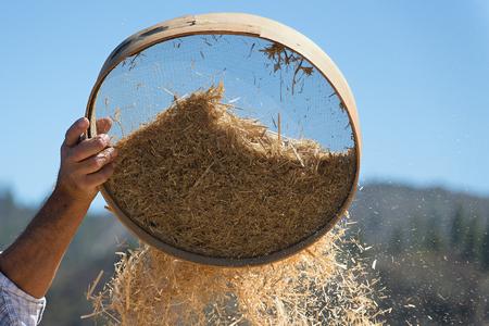 Oude zeef voor het zeven van bloem en tarwe, boer zift korrels tijdens het oogsten tijd om kaf te verwijderen Stockfoto
