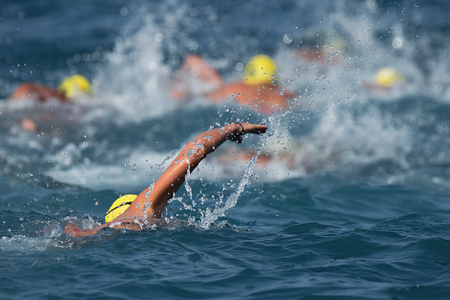 Triathlon swimmers inthe open sea,view from behind