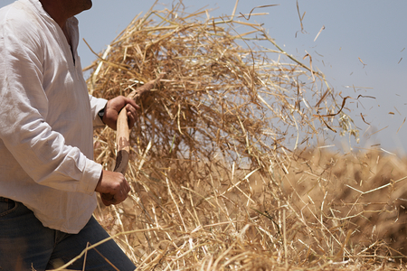 The farmer fanning wheat, separating the wheat from the chaff