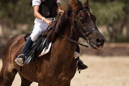 Horseback riding, equestrian child is riding a horse Stock Photo