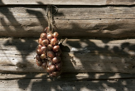 butch: Onion hanging on log house wall. Rural background Stock Photo