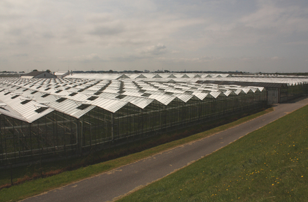 soilless cultivation: Bike path near greenhouse. Netherlands. Stock Photo