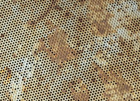 metal grid: Metal grid floor texture. Industrial background