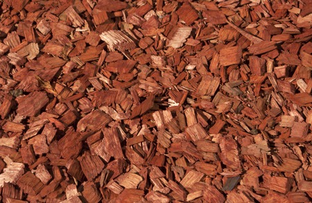 carpenter's sawdust: Red and orange wood chips texture. Decoration background