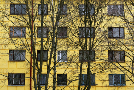 construction house: Trees in front of yellow house. Architectural background.