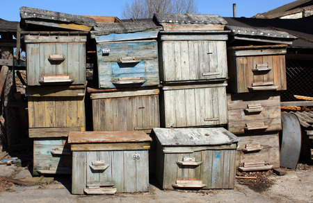 honeyed: Pile of old bee hives. Agriculture background