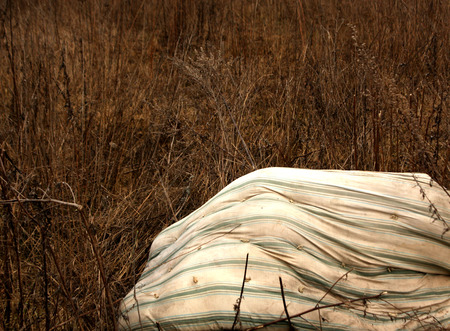 matress: Old dirty matress in dry grass. Background and view.