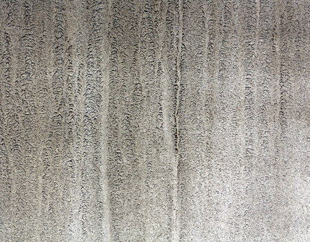dirty car: Dirty gray metal car texture. Background and texture for design