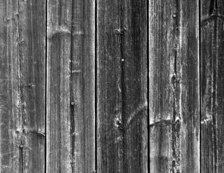 grey nails: Weathered grey wooden fence texture with nails. abstract background and texture for design.