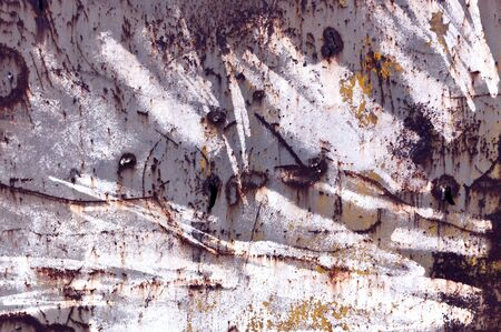 pitting: Grunge metal wall texture. Architectural background.
