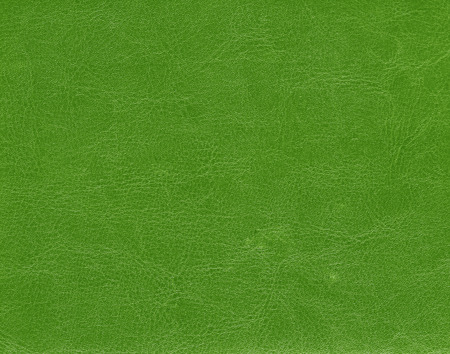 Green leather texture. Background and texture.
