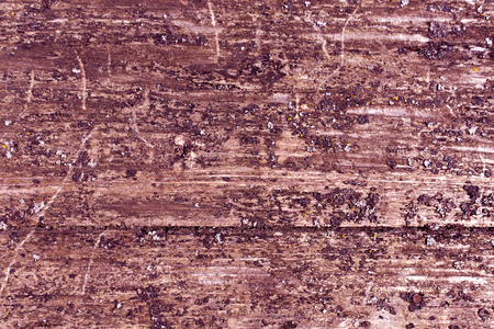 wood panel: Grungy wooden borad surface with moss. abstract natural background and texture for design. Stock Photo