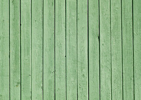 painted wood: Green color painted wooden plank pattern. Abstract background and texture for design.
