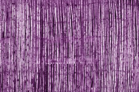 Weathered bamboo fence in purple tone. Abstract background and texture for design. Stock Photo