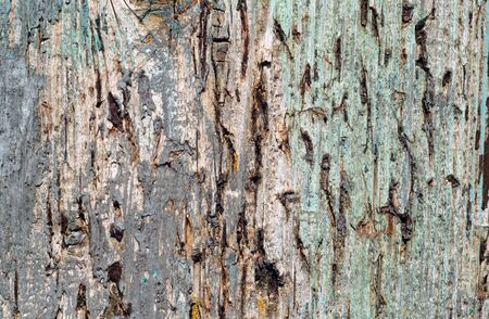 Grunge weathered wooden plank surface. Abstract background and texture for design.