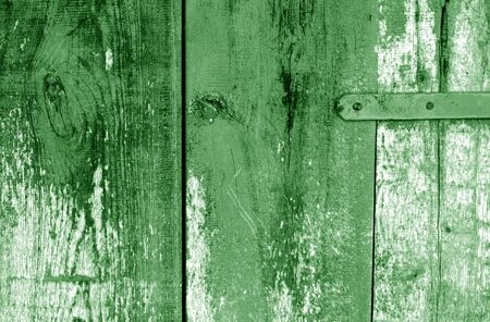 Grungy wooden planks background in green color. Abstract background and texture for design.