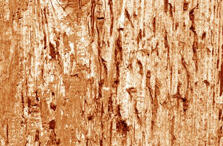 Grunge weathered wooden plank surface in orange tone. Abstract background and texture for design.