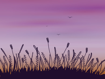 alone in the dark: Doodle stylized evening or sunrise landscape with grass and spikelets on the background of purple sky with clouds and birds