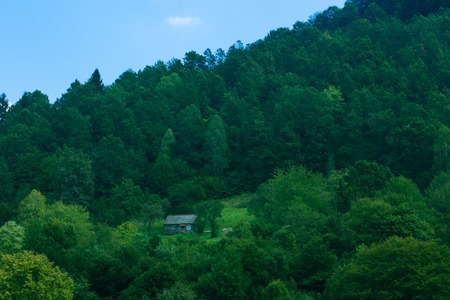 recluse: little wooden house of hermit at mountains among green forest almost invisible far from civilization