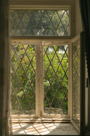 old vintage window with a grid. view from inside the house to the green garden