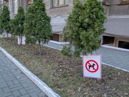 dog walking prohibited forbidden sign on pavement sidewalk with flowerbed and trees. city urban scene Imagens