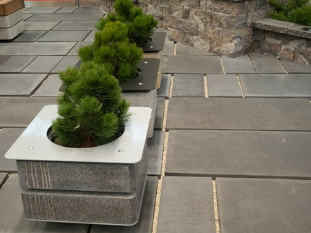 modern concrete loft style flower pots at city park
