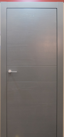 minimalistic grey room entrance door with handle