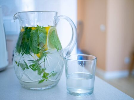 jug of tonic water lemonade with mint leaves and lemon wedges and one glass cup. perfect refreshing beverage drink for thirst on a hot day. Imagens