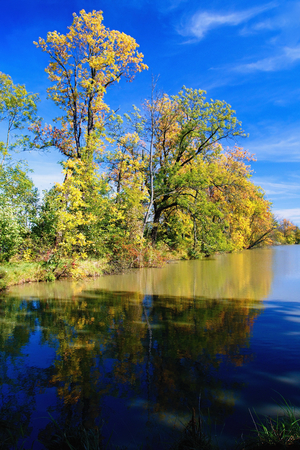 Autumn mood at a pond in the Odra River. Imagens - 111845117